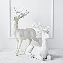 Majestic Deer - 22H & 32H