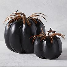 Dolce Pumpkin - Black