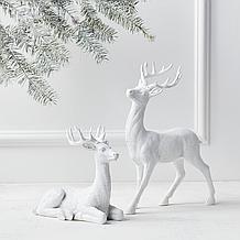 Majestic Deer - 8H & 14H