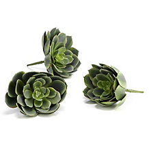 Faux Large Echeveria - Set of 3