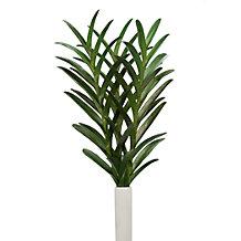 Faux Vanda Leaf - Set of  3