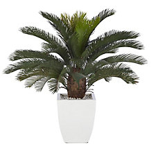 Faux Potted Sago Palm