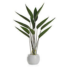 Faux Potted Water Canna