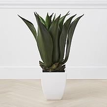 Faux Agave Bush With Square Pot