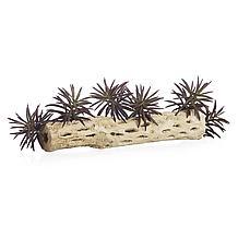 Faux Aeonium Succulent Pick - Se...