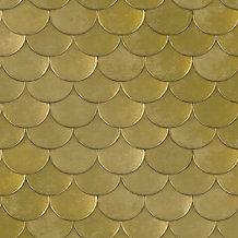 Gold Belly Wallpaper