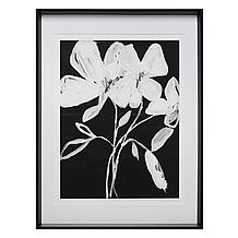 Whimsical Flowers 1 - Limited Ed...