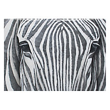 Silver Zebra - Glass Coat