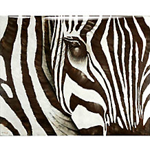 Zebra - Glass Coat