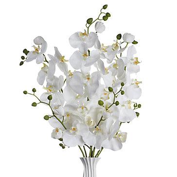 Faux Phalaenopsis Spray - Set of 3